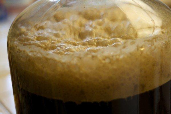 Fermentazione della birra in un fermentatore corboy